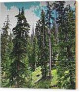 Open Subalpine Forest Wood Print