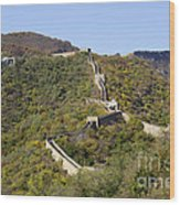 Open View Of The Great Wall 612 Wood Print