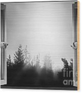 Open Window At Night Bw Wood Print