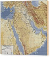 Operation Desert Storm Planning Map  1991 Wood Print