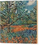 Orange And Blue Flower Field Wood Print