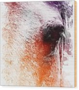 Orange And Violet Abstract Horse Wood Print by Diana Shively