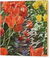 Orange And Yellow Tulips Wood Print
