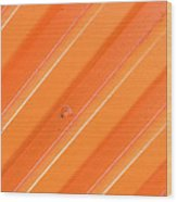 Orange Bolt Wood Print