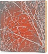 Orange Branches Wood Print