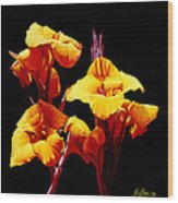 Orange Cannas Wood Print