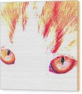 Orange Cat Eyes Wood Print