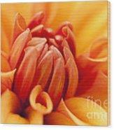 Orange Centre Wood Print