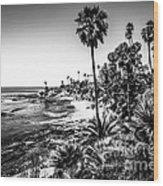 Orange County California In Black And White Wood Print