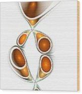 Orange Creation Wood Print