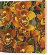 Orange Cymbidium Wood Print