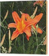 Orange Daylily Wood Print