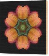 Orange Daylily Flower Mandala Wood Print by David J Bookbinder