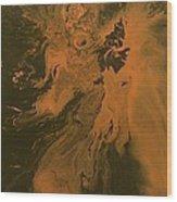 Orange Dragon Wood Print