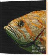 Orange Fish Wood Print