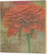 Orange Floral Fantasy Wood Print