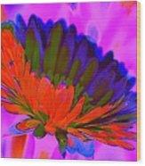 Orange Flower From Side Wood Print