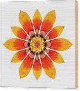 Orange Gazania I Flower Mandala White Wood Print