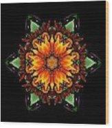 Orange Gazania IIi Flower Mandala Wood Print