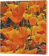 Orange Glimmer Wood Print