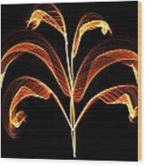 Orange Glowing Plant Wood Print
