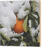 Orange In Snow Wood Print