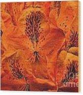 Orange Is In Wood Print