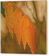 Orange Leaves Of Fall Wood Print
