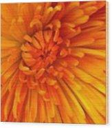 Orange Light Wood Print