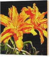 Orange Lily Twins Wood Print