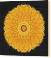 Orange Nasturtium Flower Mandala Wood Print