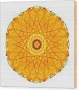 Orange Nasturtium I Flower Mandala White Wood Print