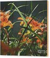 Orange Natural Beauty...   # Wood Print