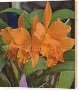 Orange Orchids Wood Print