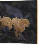 Orange Peel Wood Print