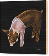 Orange Piglet - 0878 F Wood Print