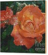 Orange Rose II Wood Print