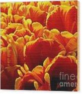 Orange Sea Wood Print