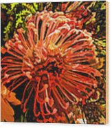 Orange Spice Floral  Wood Print