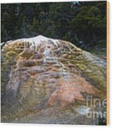 Orange Spring Mound #2 Wood Print