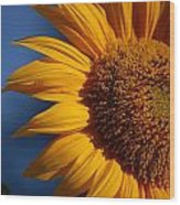 Orange Sunflower Wood Print