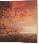 Orange Sunrise On Field Wood Print by Dorothy Walker