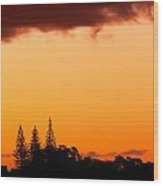 Orange Sunset And Silhouettes Of Norfolk Pines Wood Print