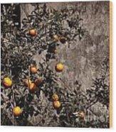 Orange Tree On Rustic Background Wood Print