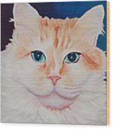 Orange White Cat Portrait Wood Print