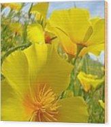 Orange Yellow Poppy Flowers Meadow Art Wood Print