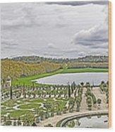 Orangerie Wood Print