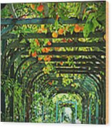 Oranges And Lemons On A Green Trellis Wood Print