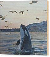Orca Wood Print