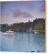Orcas Viewpoint Wood Print